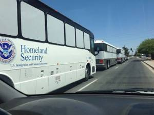 DHS Buses for Illegal-Alien Trafficking, 214